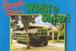 Jungle Ervs Wildlife Safaris